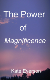 The Power of Magnificence book