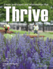 Ball Horticultural Company - Thrive 2013 artwork