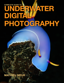 Complete Guide to Underwater Digital Photography