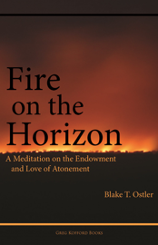 Fire on the Horizon: A Meditation on the Endowment and Love of Atonement book