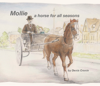 Denis Cronin - Mollie - A Horse for All Seasons artwork