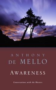 Awareness Libro Cover
