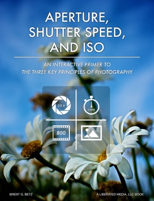 Aperture, Shutter Speed, & ISO: A Primer To The Three Key Principles Of Photography