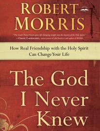 The God I Never Knew book
