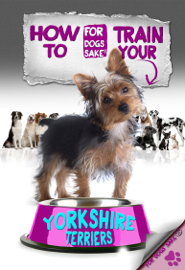 How to Train Your Yorkshire Terrier book