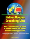 Hidden Dragon Crouching Lion How Chinas Advance In Africa Is Underestimated And Africas Potential Underappreciated - Emerging Markets Mineral Resources BRICs