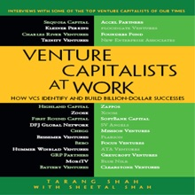 Venture Capitalists At Work