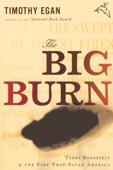 The Big Burn Book Cover