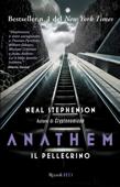Anathem. Il pellegrino Book Cover