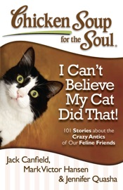 CHICKEN SOUP FOR THE SOUL: I CANT BELIEVE MY CAT DID THAT!
