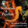 Seahorses & Pipefish