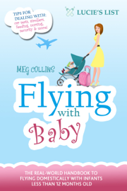Flying with Baby book