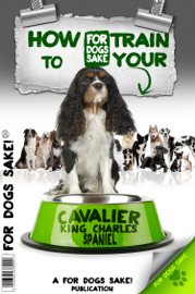 How to Train Your Cavalier King Charles Spaniel