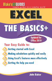 Excel the Basics +