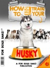 Training Your Husky