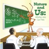 Nature And Us Whether Ants Can Think