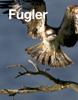 Fugler - Roy Parlow Nordbakke