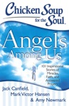 Chicken Soup For The Soul Angels Among Us