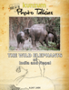 Ajay Jain - The Wild Elephants of India and Nepal artwork