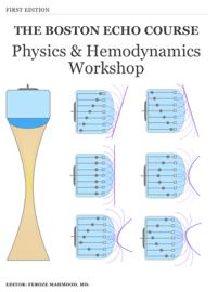 Physics and Hemodynamics Workshop