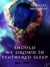 Should We Drown In Feathered Sleep