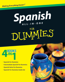 Spanish All-in-One For Dummies book