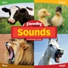 Sounds From Parenting Magazine