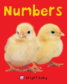 Bright Baby Numbers - Roger Priddy