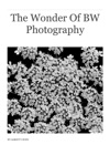 The Wonder Of BW Photography