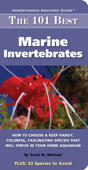 101 Best Marine Invertebrates