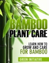 Bamboo Plant Care - How To Grow And Care For Bamboo