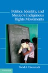 Politics Identity And Mexico-s Indigenous Rights Movements