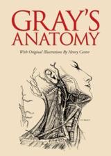 download grays anatomy