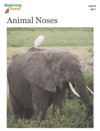BeginningReads 6-1 Animal Noses