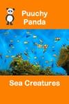Puuchy Panda Sea Creatures