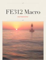 FE312 Macro
