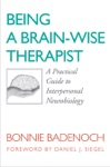 Being A Brain-Wise Therapist A Practical Guide To Interpersonal Neurobiology Norton Series On Interpersonal Neurobiology