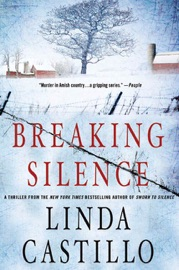 Breaking Silence PDF Download