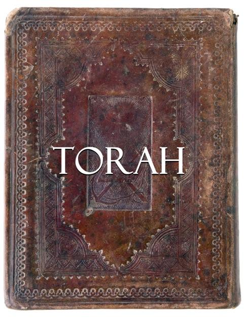 The Way Into Torah