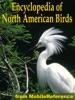 Encyclopedia Of North American Birds