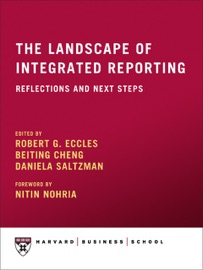 THE LANDSCAPE OF INTEGRATED REPORTING: REFLECTIONS AND NEXT STEPS