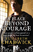 A Place Beyond Courage Book Cover