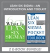 Lean Six Sigma An Introduction And Toolkit EBOOK