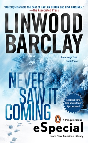 Linwood Barclay - Never Saw It Coming