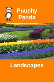 Puuchy Panda Landscapes