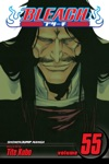 Bleach Vol 55