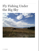 Fly Fishing Under the Big Sky