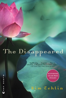 The Disappeared image