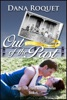 Out of the Past (Heritage Time Travel Romance Series, Book 1 PG-13 All Iowa Edition)