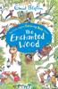 Enid Blyton - The Enchanted Wood artwork